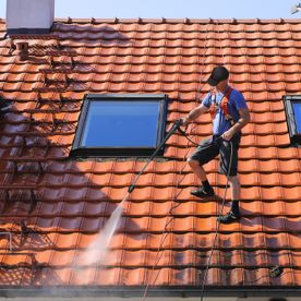 cleaning with services Roof, ground, paving, driveway + patios